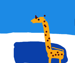 Giraffe chilling out in a pool