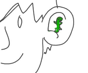 lizard hiding in a human ear