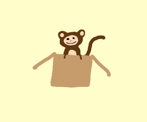 Image result for monkey in a box