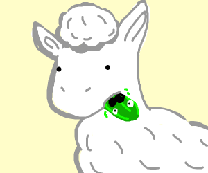 Llama eating a Cucumber