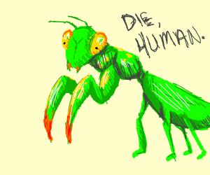 Praying mantis wants to KILL YOU