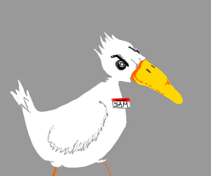 Angry Sam the Seagull