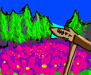 purple flowers on a hill with three arrows