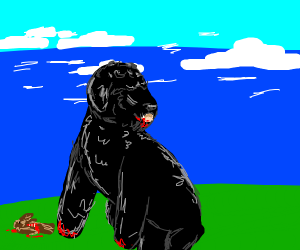 A beautiful dog mauls a bird