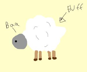 draw any fluffy animal