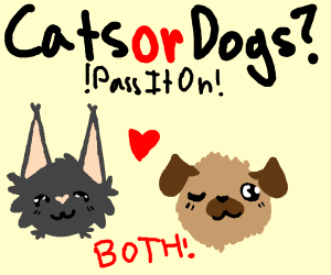 Cats or Dogs? P.I.O.