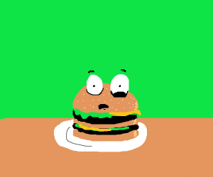 surprised burger