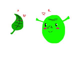 leaf x shrek