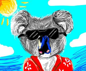 Koala on vacation