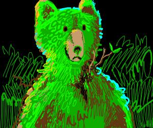 Organic Bear