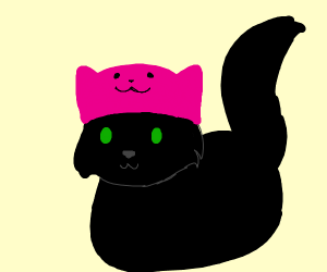 Cat with a pink cat-hat