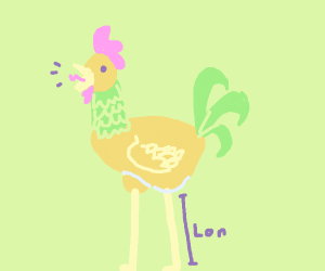 Long-legged rooster