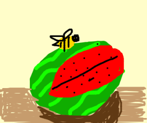 A bee on a watermelon
