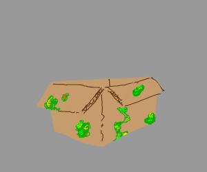Moldy box