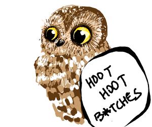 Owl hoots