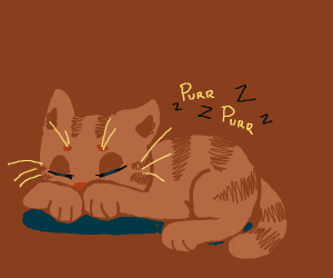 Cat sleeps and purrs