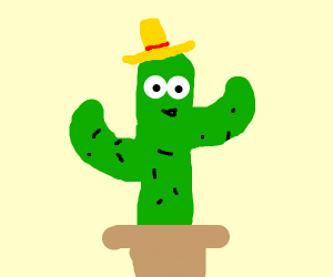Cactus with eyes