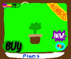 Animal Jam Plant