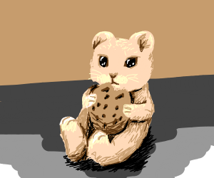 Hamster loves delicious cookie