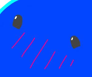 Blushing blueberry