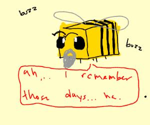 Minecraft bee with a beard