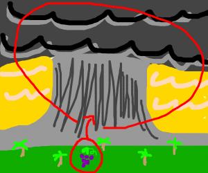 Grape in a Monsoon