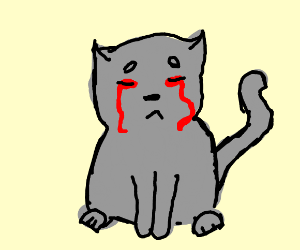 cat crying blood because he is loading