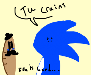 sonic speaks french to baguette