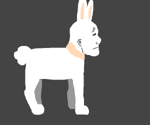 Rabbit dog thing with human face...oh gosh...