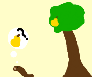 Leech looking for a Pear