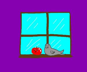 Apple sitting alone in window seal :(