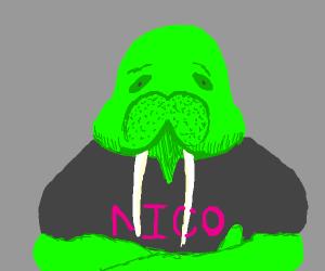 Green walrus named Nico