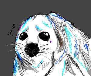 derpy seal