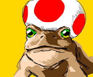 A Toad (animal) with a Toad-(from Mario) hat
