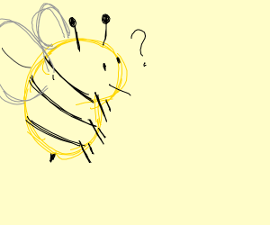 A Bee is very lost