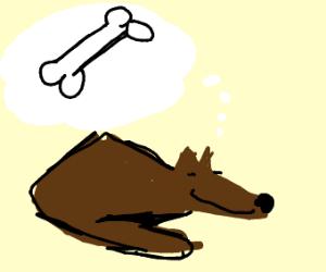 Dog thinking of a bone
