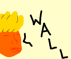 donald trump says wall