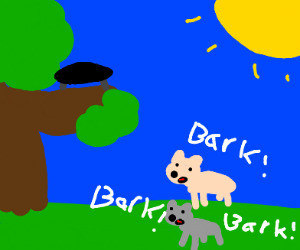 dogs barking at a trampoline in tree