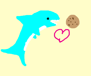 Shark loves cookie