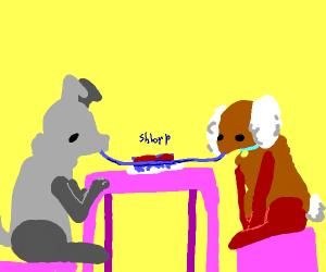 Grey dog and brown dog share spaghetti