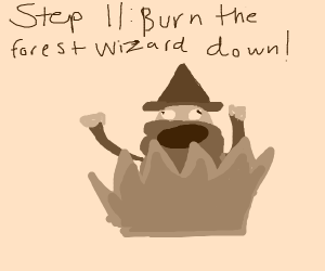 Step 10: Find a forest wizard