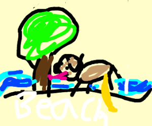 dog pissing on beach while licking tree