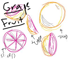 Grapefruit Concept Art