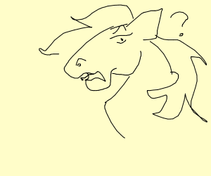 A confused horse