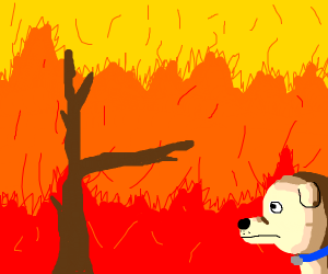 Man and dog watch the forest burn
