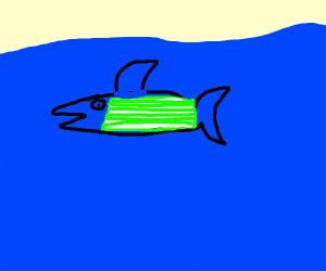 Celery Shark