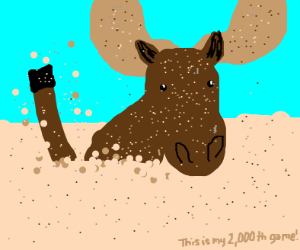 Moose playing in the Sand