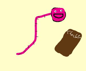 Chocolate Earthworm