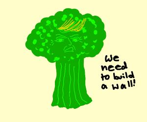 Trump is now Broccoli