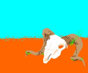 Ram skull in desert wasteland